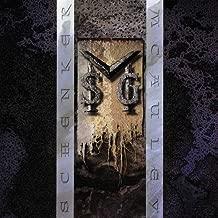 M S G