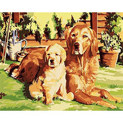 LvJin DIY Digital Painting Zwei goldene Retriever,die auf dem Rasen liegen,Malen nach Zahlen,Malen für Anfänger,Kunstkits,Zahlenmalen,rahmenlose Schwarzweiß-Leinwand16*20In