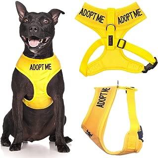 adopt me vest