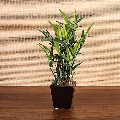 Bambu Artificial Vaso 22cm Etna