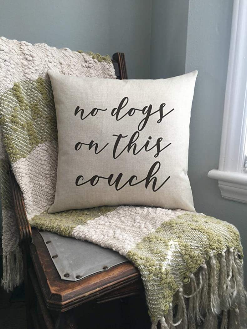 Pillow/Couch Pillow/No Dogs On This Couch/Funny Pillow