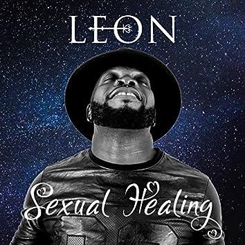 Sexual Healing (Marvin Gaye from Kinshasa to Mekoé)