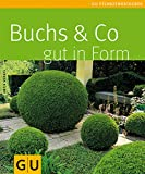 Buchs & Co. gut in Form