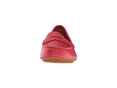 Grano Completo Rojo Chile Nacido Grano xRw1Rrp7q0