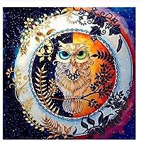 Paint by Numbers DIY アクリル絵画 フクロウ動物 ホーム オフィス 装飾 油絵 数字キット塗り絵 手塗り -40x50cm (フレームレス)