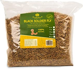 diig Non-GMO Dried Mealworms/Crickets/Black Soldier Fly - Treats for Birds Chickens Hedgehog Hamster Fish Reptile Turtles...