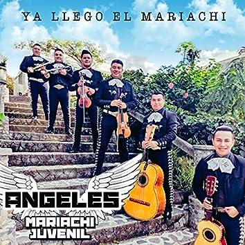 Ya Llego el Mariachi