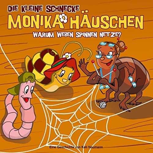 Warum weben Spinnen Netze? Titelbild