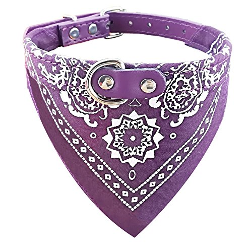 Newtensina Mode Hundebandana Halsband HundeHalsband Junge Mittel Bandana Hündchen Bandana mit Halsband für Hunde - Purple - S