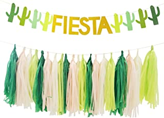 Sibosen Fiesta Cactus Llama Party,Fiesta Cactus Banner Tassels Garland for Mexican Bachelorette/Taco/Summer/Cabo/Tropical/Succulent Theme Party Supplies Decorations