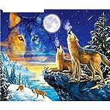 Kit de Pintura por números DIY Pintura al óleo para Lienzo Adultos/Niños Luna Lobo Dibujo Lienzo con Pinceles y Acrílica Pinturas para pared decor Arte Navidad Regalos (Con marco,50x65cm/20x26inch)