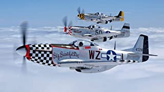 Air Forces WW2 P51 Mustang Fabric Cloth Rolled Wall Poster Print -- Size: (43