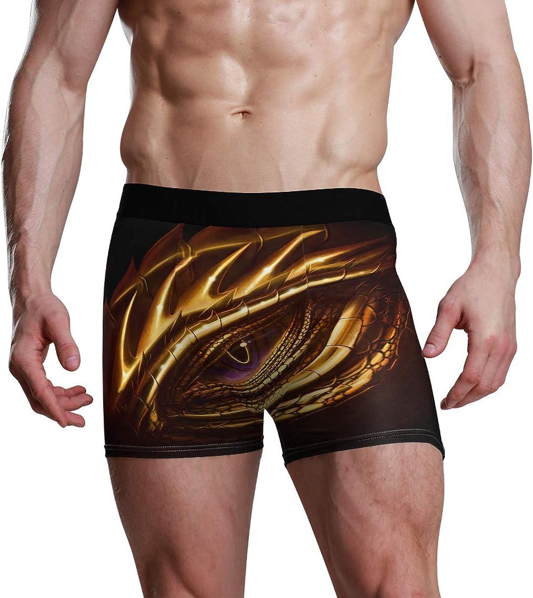 Mens Boxer Briefs Underwear Eye of Golden Dragon Cool Amazing Trunks Underwear Short Leg Boys