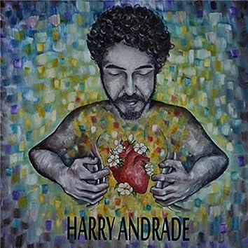 Harry Andrade