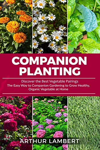 Companion Planting: Discover the Best Vegetable Pairings. The Easy Way to Companion Gardening to Grow Healthy, Organic Vegetable at Home. by [Arthur Lambert]