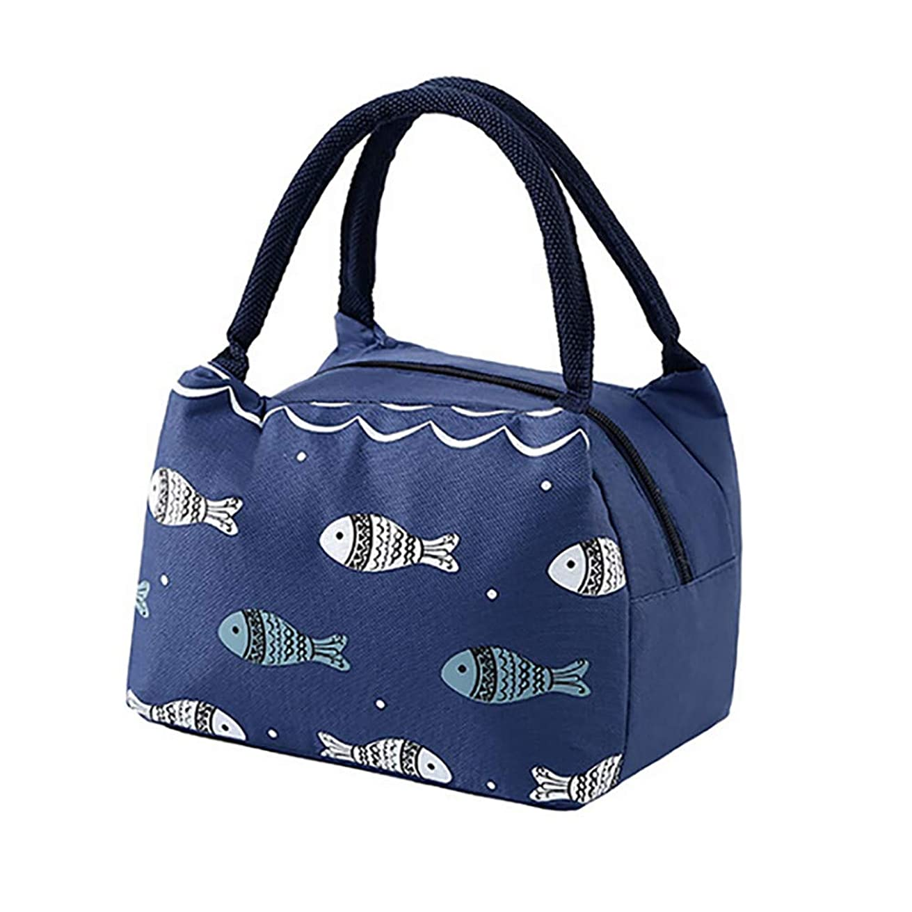 Jessie storee Insulated Lunch Bag High Capacity Cooler Bento Box Waterproof Reusable Thermal Portable Bag - Office Work Picnic Hiking Beach Lunch Box Organizer for Family Food Storage Bag,