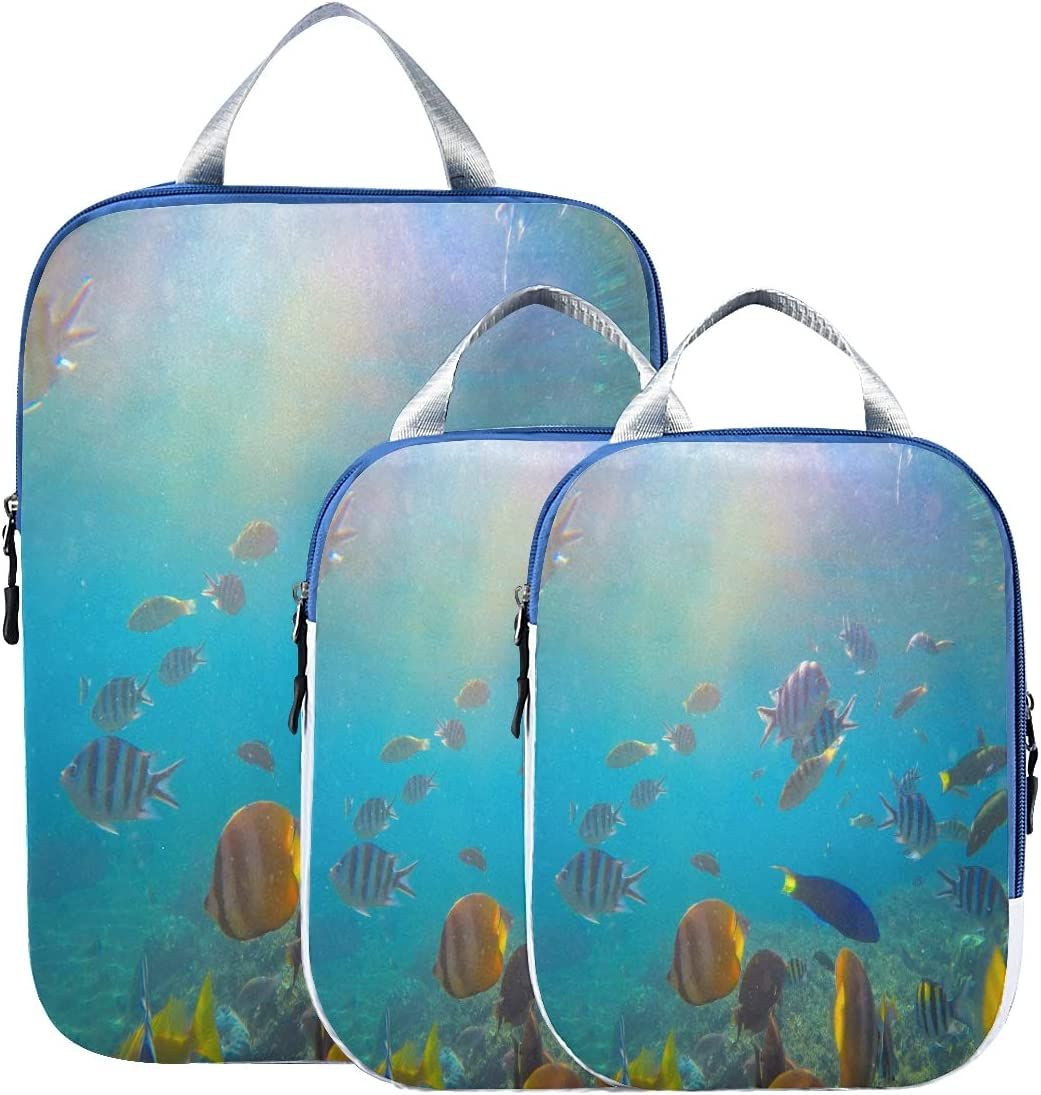 Sale Compression Cubes For Travel Butterflyfish Coral Unde Parrotfish Oklahoma City Mall