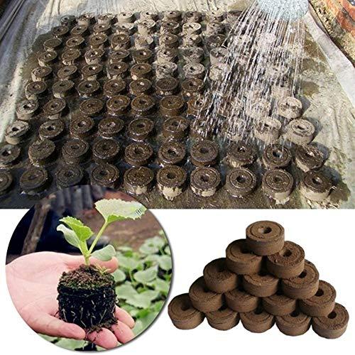 Lai-LYQ 90 Stks Zaailanden Bodemblok, Zaad Starter Pallet Plant Groeiende Houder Bloem Planter Potten voor Thuis Tuin Balkon