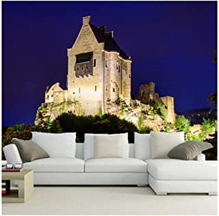 Yxjj1 Custom 3D Large Mural,The Ruins of The Castle,Living Room TV Wall Bedroom wallpaper-400cm(W) x 250cm(H) (13'1