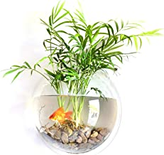 Decdeal Hanging Wall Mounted Fish Bowl Goldfish Tanks Acrylic Hanging Aquariums Flowerpot Flower Vase for Home and Office Use One Size Type 3