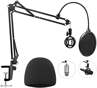 Heavy Duty Microphone Stand with Mic Windscreen and Dual...