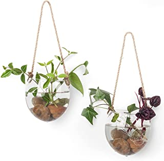 2 Pack Terrariums Container Flower Planter Hanging Glass for Hydroponic Plants Home Garden,Home Office Living Room Decor,O...