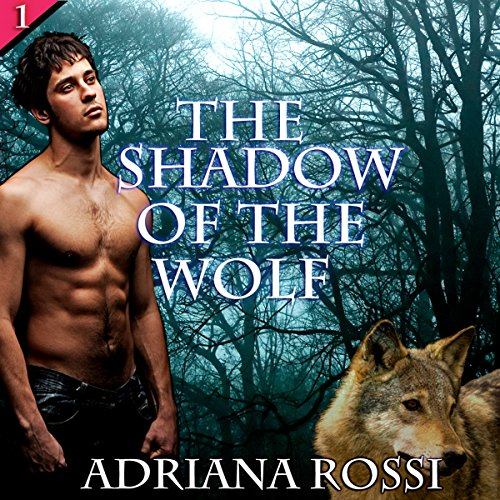 The Shadow of the Wolf audiobook cover art