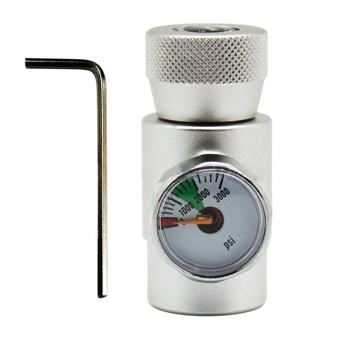物思いにふけるるかなりQueenwind W 21.8-14 スレッド CO2 ガス充填 Sodastream タンク用アダプターコネクタ