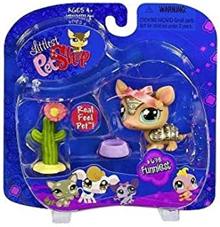 Hasbro Littlest Pet Shop Pets On The Go Armadillo with Cactus