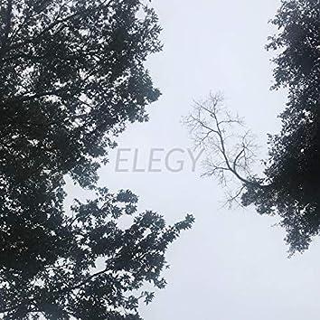 Elegy