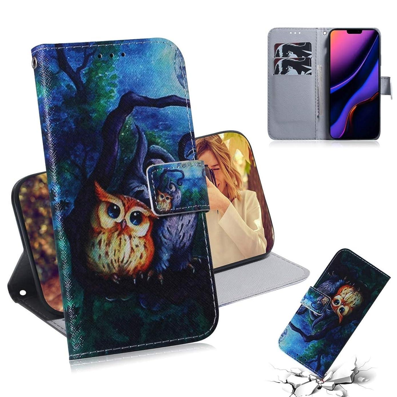 表面士気バラ色ファッション革携帯電話ケース IPhone XIR、ホルダー&カードスロット&財布で3D描画色の水平フリップレザーケース用 (パターン : Oil painting owl)
