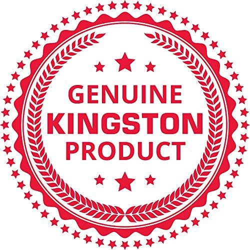 Kingston DTVP30 16GB Speicherstick USB 3.0 (256-Bit: Hardwareschlüsselung) blau