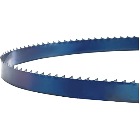 Bands/ägeblatt BansoFlex back Made in Germany 3710x16x0,65mm 3 ZpZ