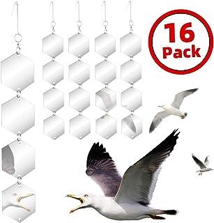 Amazon com: bird deflectors to keep away from house