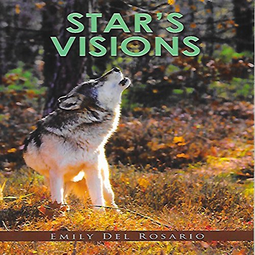 Star's Visions audiobook cover art