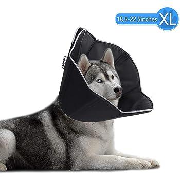 FOCUSPET Dog Cone Collar for Surgery, Pet Recovery Collar for After Surgery, Dogs & Cats Soft Recovery Collar Protective Collar for Large Dogs Wound Healing