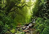 XXL Poster 100 x 70cm (S-832) grüner Dschungel Urwald mit