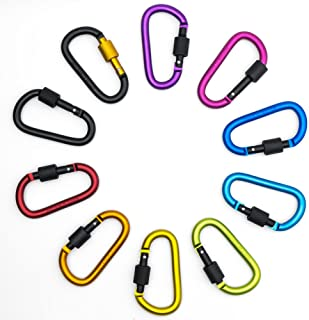 Worcas 10 Pack Carabiner Clip, Aluminum Screw D Ring Locking Carabiner Keychain Spring Clips Hooks Outdoor D Shaped Keychain Buckle for Camping, Hiking, Fishing (Multicolor)