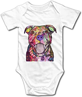 Best pitbull suits brand Reviews