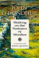 Walking on the Pastures of Wonder: John O'Donohue in Conversation with John Quinn 1847305253 Book Cover