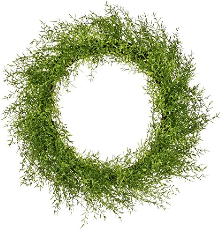 Sullivan's 23  Green Feather Fern Wreath