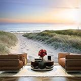murando - Fototapete Meer Strand 300x210 cm - Vlies Tapete - Moderne Wanddeko - Design Tapete - Wandtapete - Wand Dekoration – Sand See Himmel Sonnenuntergang Weg Natur Landschaft...