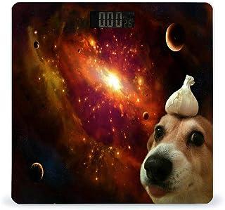Balanza de peso digital para perros Galaxy Garlic de alta precisión inteligente con pantalla LCD para baño