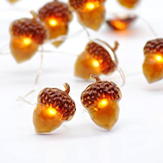 Impress Life Decorative Lights, Acorn Lights String 10 ft Copper Wire 40 LEDs New Battery-Powered for Ice Age, Camping, We...