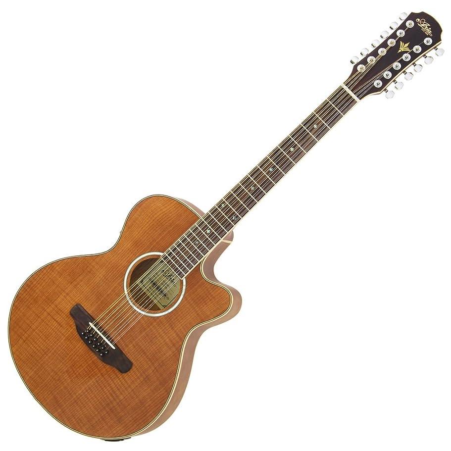 ラベル凝縮するカールARIA アリア エレアコギター 12弦ギター サイドバックオープンポア仕上げ ナチュラルグロス FET-12/SPL N