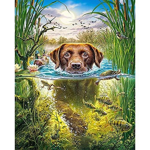CRYUN 5D DIY Diamond Embroidered Swimming Dog Rhinestone Animal Mosaic Diamond Painting Home Decor Round Drill 30x40cm