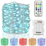 Homestarry Fairy Lights Battery Operated Outdoor String Lights with Remote Color Changing Lights for Bedroom Indoor Wedding Stroller Christmas Costume, 33 ft 100 LED's,13 Colors