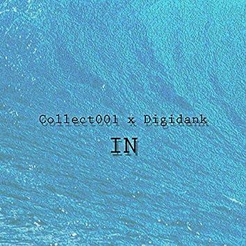 IN (feat. Digidank)