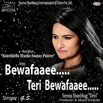 Bewafaaee Teri Bewafaaee - Single