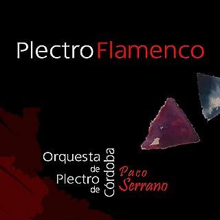 PlectroFlamenco
